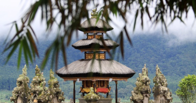 Власти Бали назвали условия открытия границ длятуристов Губернатор острова рассказал, чтодостигнута договоренность оботкрытии длятуристов «зеленой» зоны.