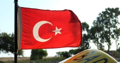 Россиянке запретили покидать Турцию из-за кражи в отеле