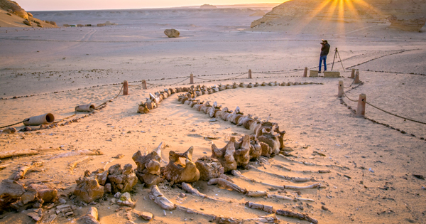 Катакомбы и белая пустыня: места в Египте, которые впечатляют больше пирамид