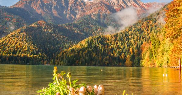 Что делать туристам осенью в Абхазии