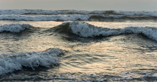 Насколько опасно справлять нужду в море
