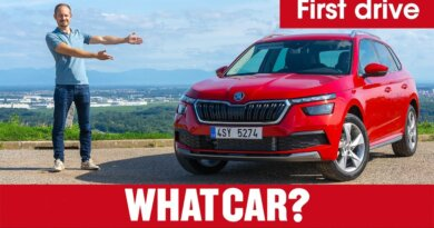 2021 Skoda Kamiq SUV review – the world's best small SUV? | What Car?