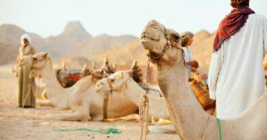 Сразу тюрьма: что нельзя делать туристам в Египте