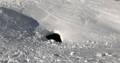 Лыжница упала вдействующий вулкан ивыжила