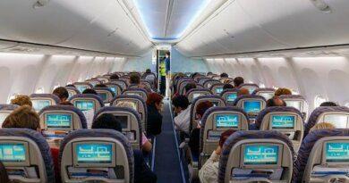 Пассажирка бизнес-класса устроила дебош в самолете