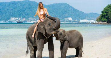 Таиланд отменяет обязательный карантин для туристов