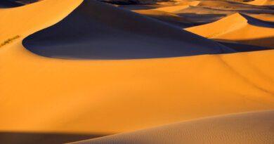 """По следам """"Дюны"""": 9 самых красивых пустынь мира"""