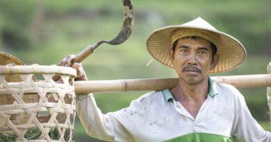 Как переехать на Бали и жить на 35 тысяч рублей