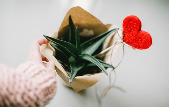Какие предметы нужно иметь вдоме, чтобы привлечь любовь&nbsp
