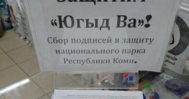 Активисты Коми направили в Госдуму подписи за сохранение нацпарка «Югыд ва»