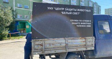 Александр Богатырёв продолжит заниматься отловом собак в Усинске