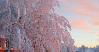 Аномальные морозы задержатся в Коми до конца недели