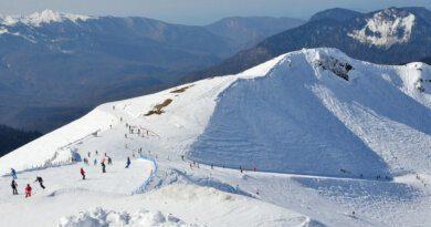 Туристов призвали непокупать места вочередях вСочи