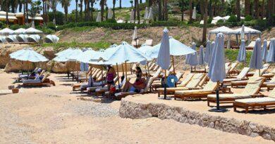 «Ценник конский»: россияне обсудили стоимость отдыха в Египте