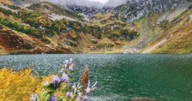 Чем притягивает туристов Абхазия в октябре