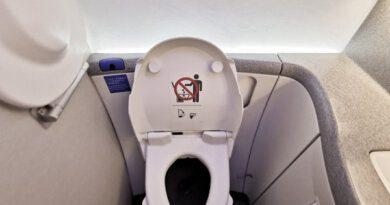 Пассажир справил нужду наглазах устюардессы