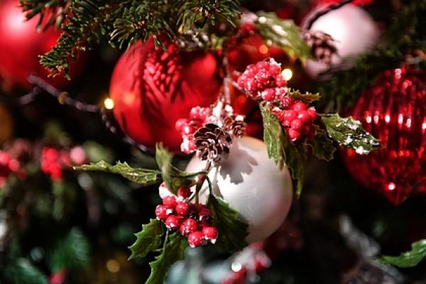 Оценена стоимость покупки иукрашения новогодней елки&nbsp