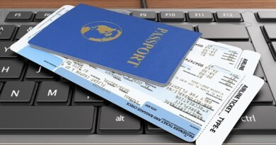 Раскрыта стоимость самого дорогого авиабилета у россиян