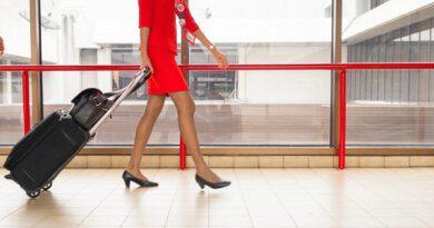Откровенный танец стюардессы смутил людей