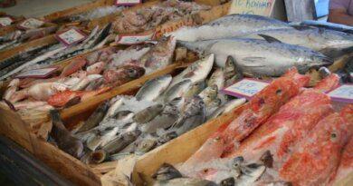 Диетолог назвала самую полезную для здоровья рыбу