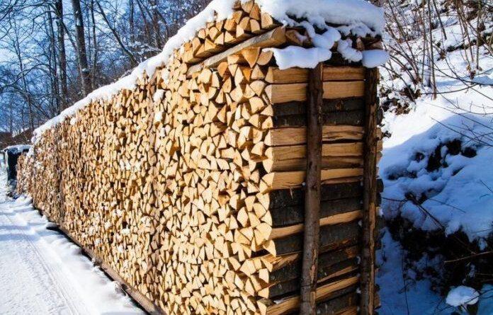 Директор частной организации в Усинске решила нажиться на поставке дров жителям Колвы