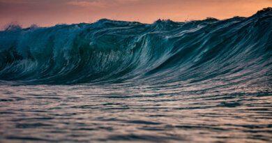 Гигантские волны вСочи попали навидео