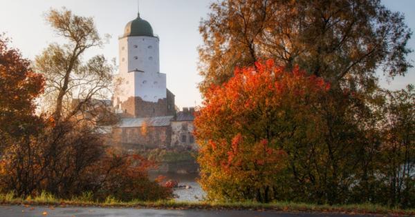 Русская Швеция: зачем ехать в Выборг осенью