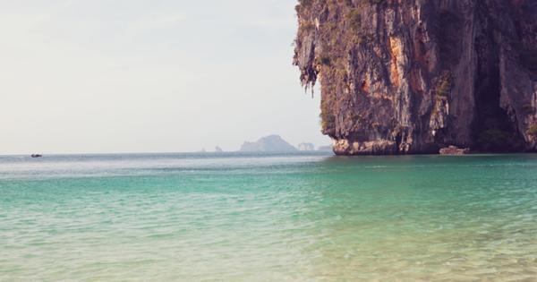 Мальчик дотронулся до морского обитателя в Таиланде и умер