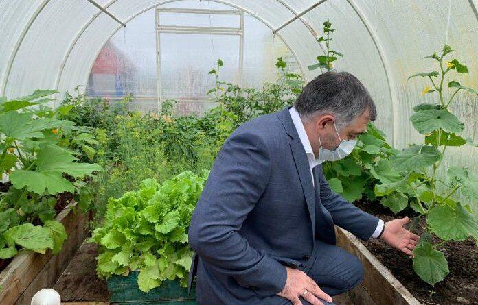 Глава Усинска высоко оценил, как воспитатели Новикбожа прививают любовь к земле и труду
