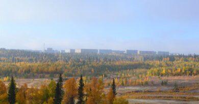 Города и поселки Арктики разделили на восемь категорий