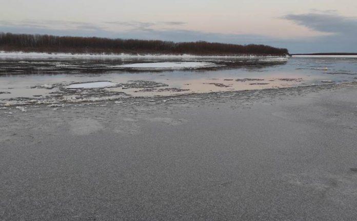 Комитет спасения Печоры сообщил об отсутствии нефтяных пятен в районе села Колва