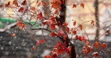 Конец октября в Усинске пройдёт положительно