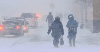 Москвичей призвали отложить поездки наличных авто вечером 12февраля из-за метели