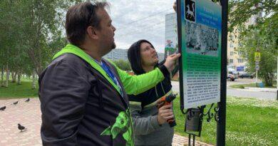 На аллее улицы Молодежной обновилась выставка картин