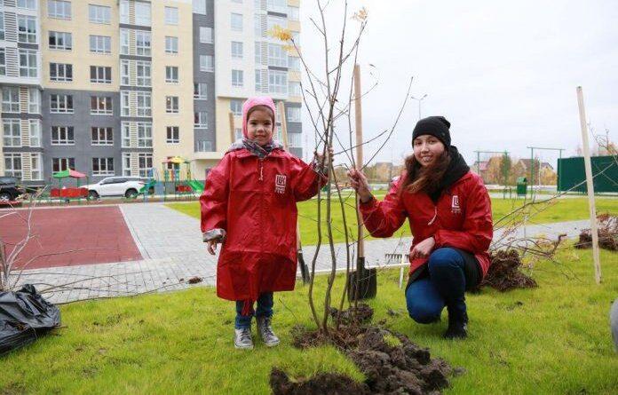 Нефтяники ЛУКОЙЛа присоединились к акции «Сад памяти»