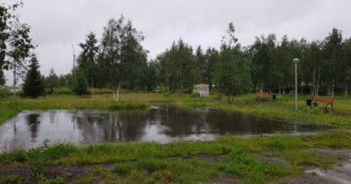 Понедельник встречает Усинск прохладой