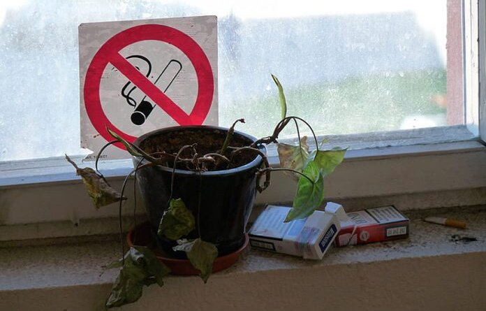 Россияне смогут заработать на курящих соседях
