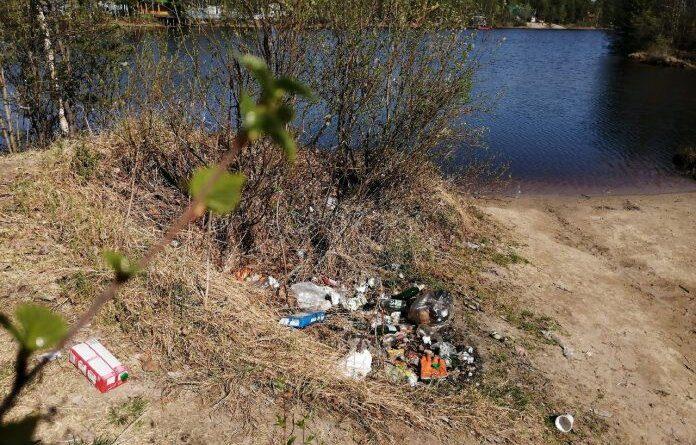 С первыми жаркими днями в лесах около Усинска расцветают мусорные поляны