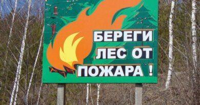 """Сегодня в Щельябоже будут """"ликвидировать низовой пожар"""""""
