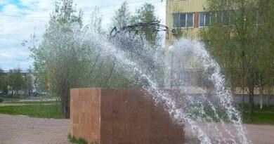 Сквер имени Валентины Ефремовой и сквер у памятника комару благоустроят в 2022 году
