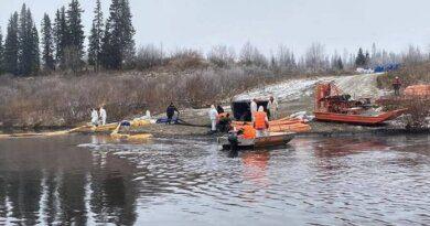 Специалисты не зафиксировали гибели рыб на месте нефтеразлива на реке Колва