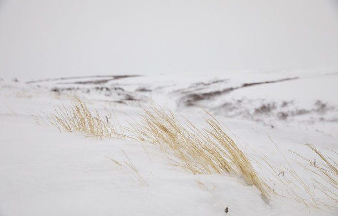 Сроки сдвигаются: зимник до Нарьян-Мара откроют не раньше 20 января