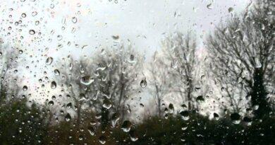 Усинский ноябрь всё ещё дождливый