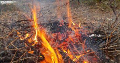 В России с 1 января 2021 вступили в силу новые противопожарные правила