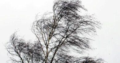 В Усинске сегодня ветрено