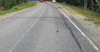 Вчера в Усинске столкнулись два автомобиля, есть пострадавшие