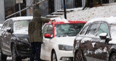 Законы ноября серьезно изменят жизнь водителей и кадровиков