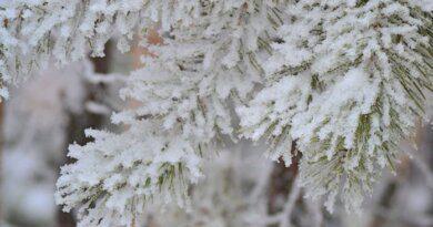 Зима набирает обороты в Усинске